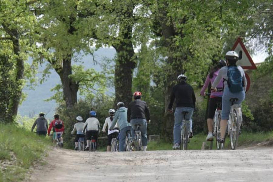 Hybrid bike Guided Tour for big family in Castellina in Chianti