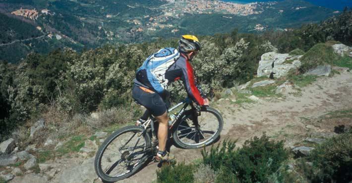 bike tour pisa